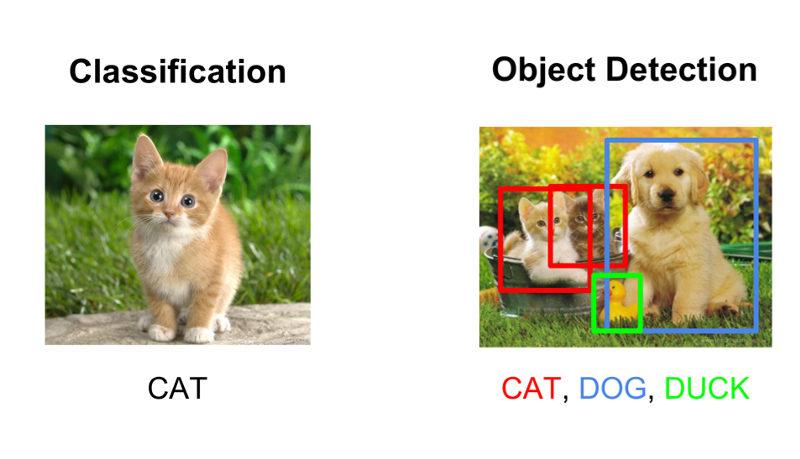 Classification vs Detection